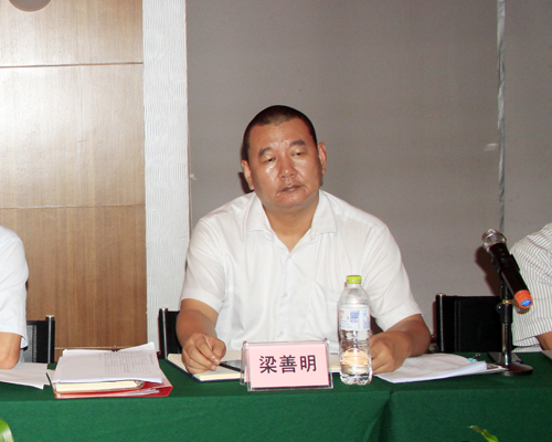 金桥集团总经理梁善明讲话-金桥集团召开2013年中工作会议